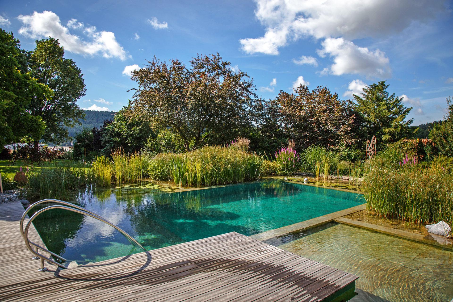 Kalhofer gartengestaltung schwimmteiche landschaftsbau for Naturteich schwimmteich